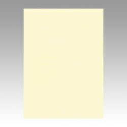 Color Drawing Paper, New Color, One-Quarter Light Cream