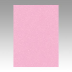 Color Drawing Paper, New Color, One-Quarter Pink