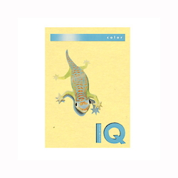 BIO Top Color Paper A4 250 Sheets 160 g/m² Yellow
