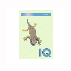 BIO Top Color Paper A4 250 Sheets 160 g/m² Green