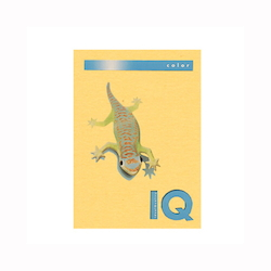 BIO Top Color Paper A4 250 Sheets 160 g/m² Old Gold