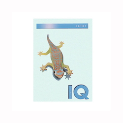 BIO Top Color Paper A4 250 Sheets 160 g/m² Blue