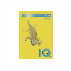 BIO Top Color Paper A4 250 Sheets 160 g/m² Mustard