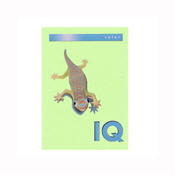 BIO Top Color Paper A4 250 Sheets 160 g/m² Medium Green