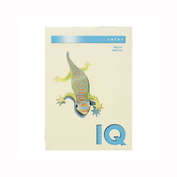 BIO Top Color Paper A4 500 Sheets 80 g/m² Vanilla