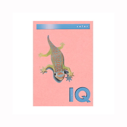 BIO Top Color Paper A4 500 Sheets 80 g/m² Pink