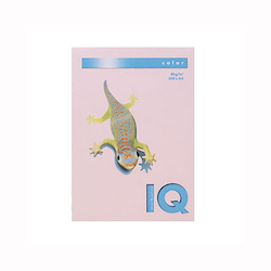 BIO Top Color Paper A4 500 Sheets 80 g/m² Flamingo