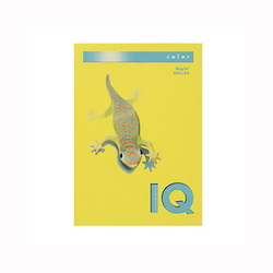 BIO Top Color Paper A4 500 Sheets 80 g/m² Mustard