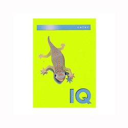 BIO Top Color Paper A4 500 Sheets 80 g/m² Lime Green