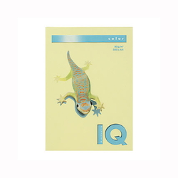 BIO Top Color Paper A4 500 Sheets 80 g/m² Lemon