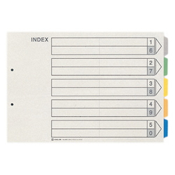 Color Index, Standard: B4 Portrait Type, Number of Holes: 2, Specifications: 5 Colors / 5 Tabs / 6-Piece Set