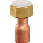 Copper Pipe Adapter with Nut (for Water Supply)