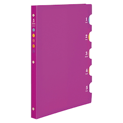 B5 File Five Chart Light B Pink
