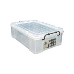 Clear Buckle Container, Tag Box