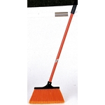 Orange Broom