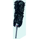 Tail Feather Automobile Duster