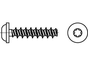 ART 88204 Screw f. thermoplastic