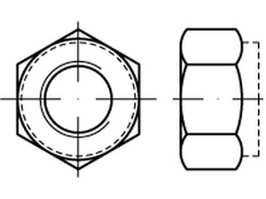 DIN 6924 Hexagon nuts
