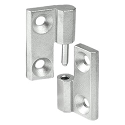 Stainless Steel-Hinges detachable