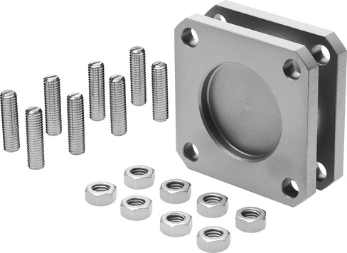 Multi-orientation mount, DPNC Series