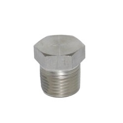 NPT Fitting 6P/Hexagon Plug