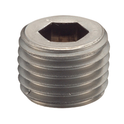 NPT Fittings SP/Sunk Head Plug