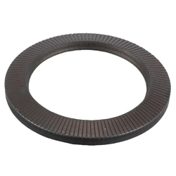 Flat Spring Washer for Hex Bolts