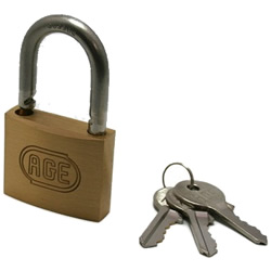 Stainless Steel Vine Double Lock Padlock, Different Key Number