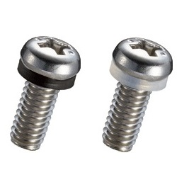 Stainless Steel 316 Screw (Cross-Recessed Head) UM