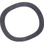 Iwata Denko Standards Iron Wave Washer (Bearing)