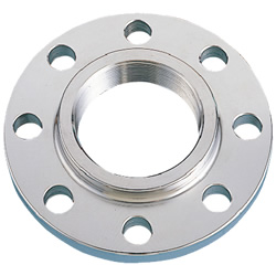 Stainless Steel Screw-In Pipe Fitting, Flange