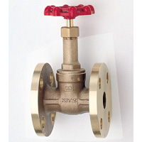 General Purpose Bronze 10K Gate Valve Flange