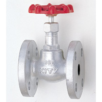 General Purpose Ductile Iron 10K Globe Valve Flange