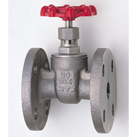 Stainless Steel General-Purpose 10K Gate Valve Flange