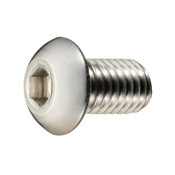 Button Bolt with Hex Socket Head