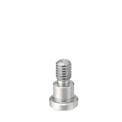 Bearing Shaft Screws/Flanged