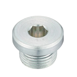Flange Hex Socket Head Screwed Plug _SPN-L