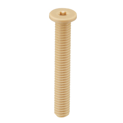 PPS (Polyphenylene Sulfide) / Hexalobular Socket Extra Low Head Cap Bolt