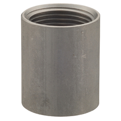 Stainless Steel Socket (parallel thread) SFS2