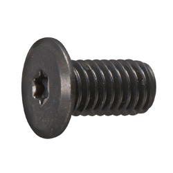 TRX Slim Head Screw