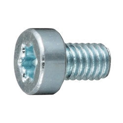 Low Head TORX Bolt with Hole