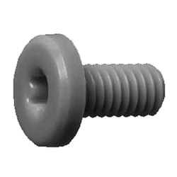 PEEK Extra-Low-Head Bolt with Hexalobular Socket