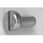 Slotted Fillister Head Screw