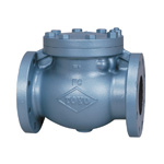 JIS 10K Type - Cast Iron F Type Swing Check Valve (JIS B 2031)