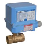 BM-12CR, Capacitor-Return Ball-Type Electric Valve